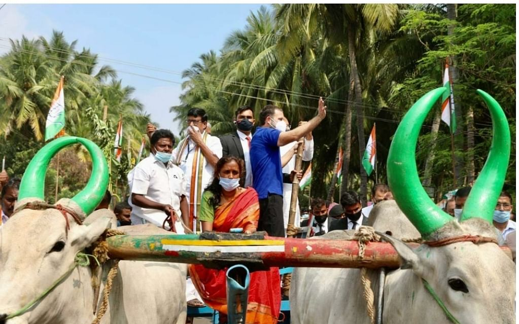 கரூர்: மண்பானைச் சமையல்... குழந்தைகளுடன் செல்ஃபி! - ராகுல் காந்தியின் ஒரு நாள் விசிட்