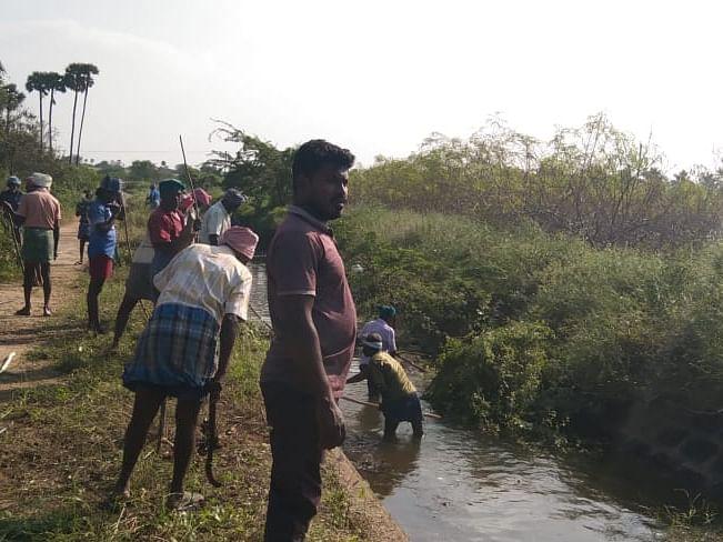 கரூர்: `15 வருஷத்துக்குப் பிறகு தண்ணீர் தேக்கப்போறோம்!' - மராமத்து பணியில் இளைஞர்கள்