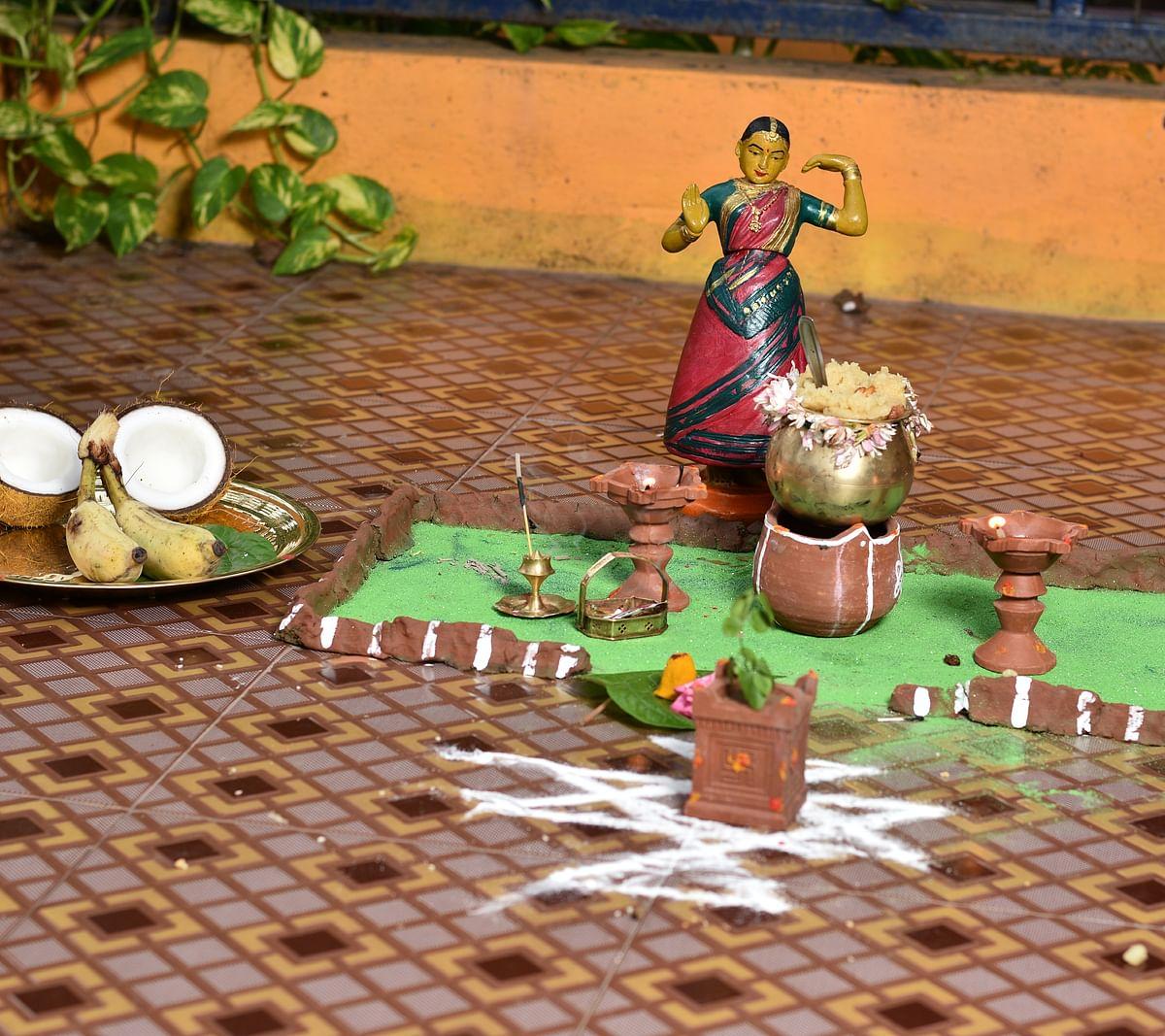 பொங்கல் - அதிகாலை சுபவேளை