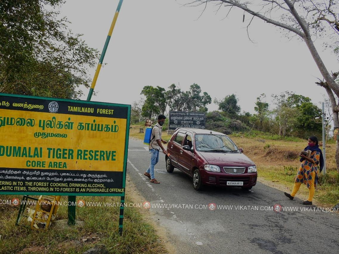 நீலகிரி: பறவைக் காய்ச்சல் தாக்கிய பகுதிகளிலிருந்து வரும் வனப் பறவைகள்! - எச்சரிக்கும் ஆட்சியர்