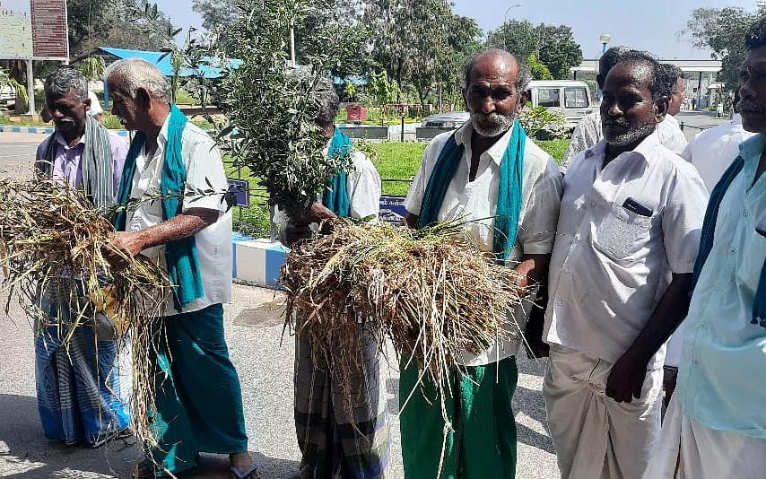 கரூர்: `பாதிப்புகளை இன்னும் கணக்கெடுக்கவே இல்லை!' - ஆட்சியர் அலுவலகத்தில் கூடிய விவசாயிகள்