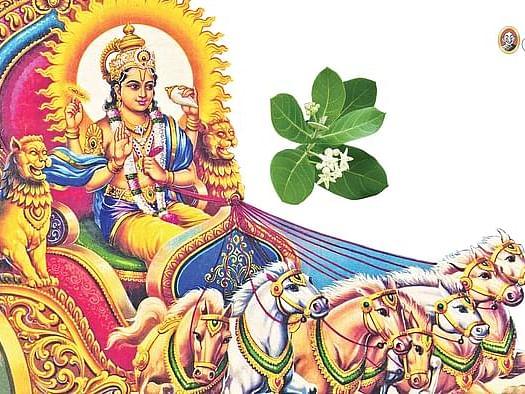 ரதசப்தமி புண்ணிய ஸ்நான மகிமைகள்... நீராடும் நேரம்... சொல்ல வேண்டிய மந்திரங்கள்! #Rathasapthami