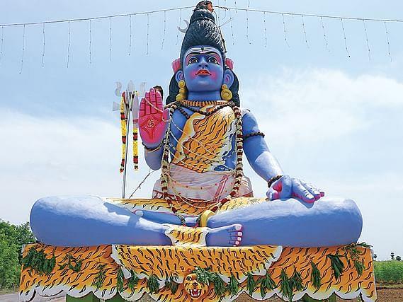 சித்தர்கள் வழியில் சிவவழிபாடு... சிவராத்திரி அன்று மகாமூலிகை அபிஷேகம்... நீங்களும் சங்கல்பிக்கலாம்!