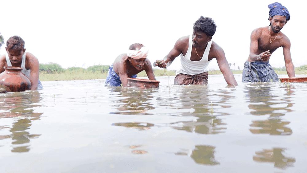 வில்லேஜ் குக்கிங் சேனல் டீம்