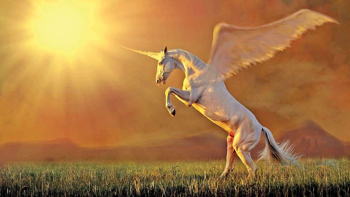 unicorn   யுனிகார்ன்