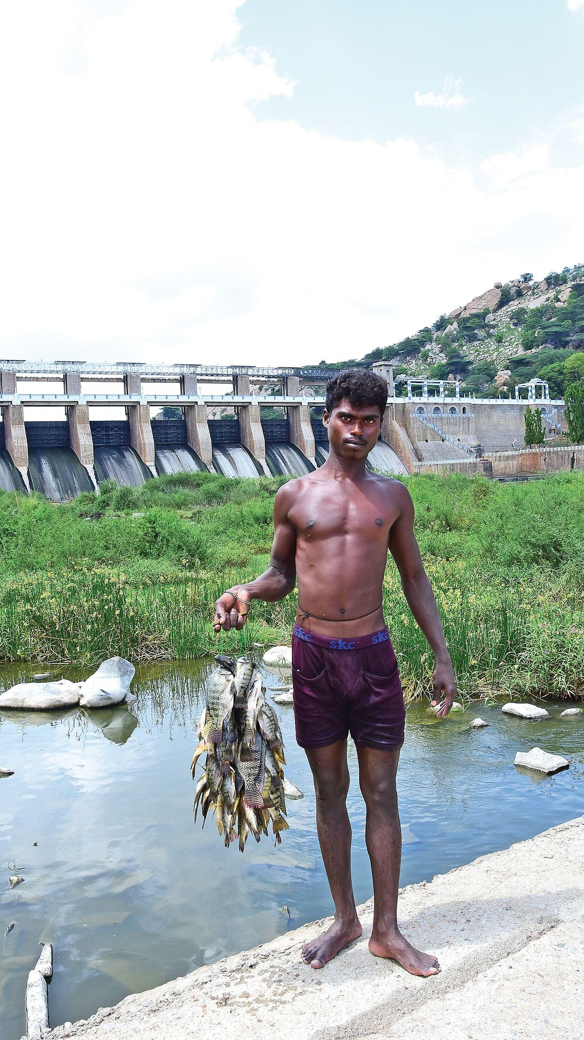 ஜிலேபி மீன் கிலோ 100 ரூபாய்