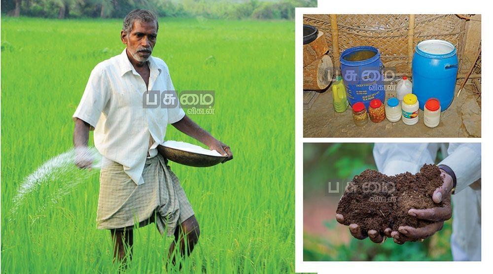 ரசாயன உரங்களுக்கு மாற்றாக இயற்கை உரங்கள்