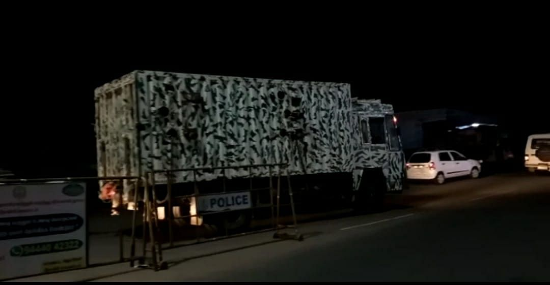 Wild elephant in truck