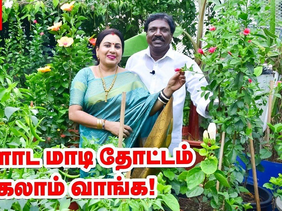 `எங்களோட மாடித்தோட்டம் பார்க்கலாம் வாங்க!' - அனிதா குப்புசாமி | Anitha Kuppusamy Terrace Garden