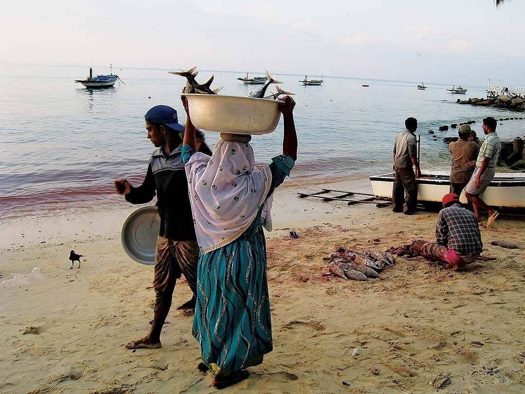 `அமைதியாக அரபிக்கடலின் தாலாட்டில் தூங்கிய மக்களுக்கா இந்த நிலை?' - லட்சத்தீவின் குரல்  #MyVikatan