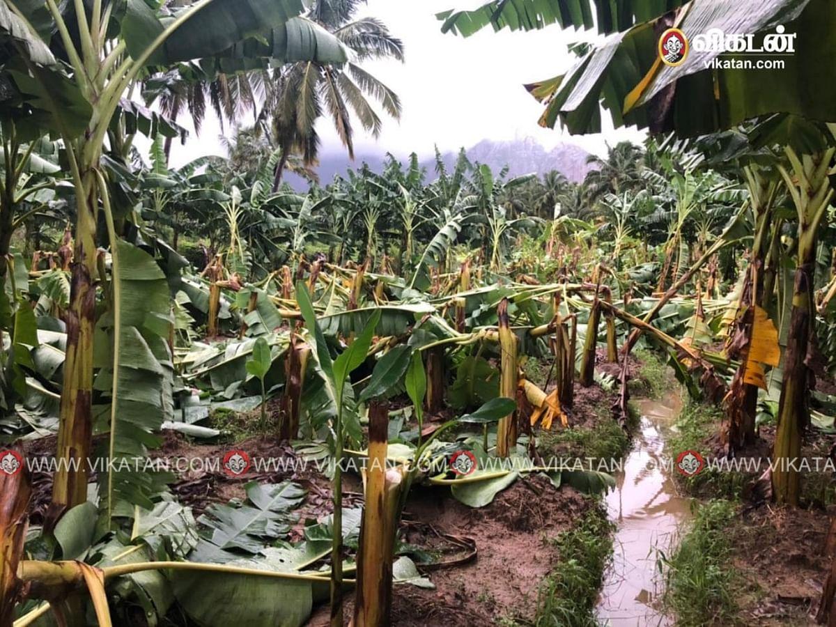 cyclone tauktae: 4 நாட்களாக குமரியை மிரட்டும் கன மழை - வீடு இடிந்து 2-வயது குழந்தை பலி!