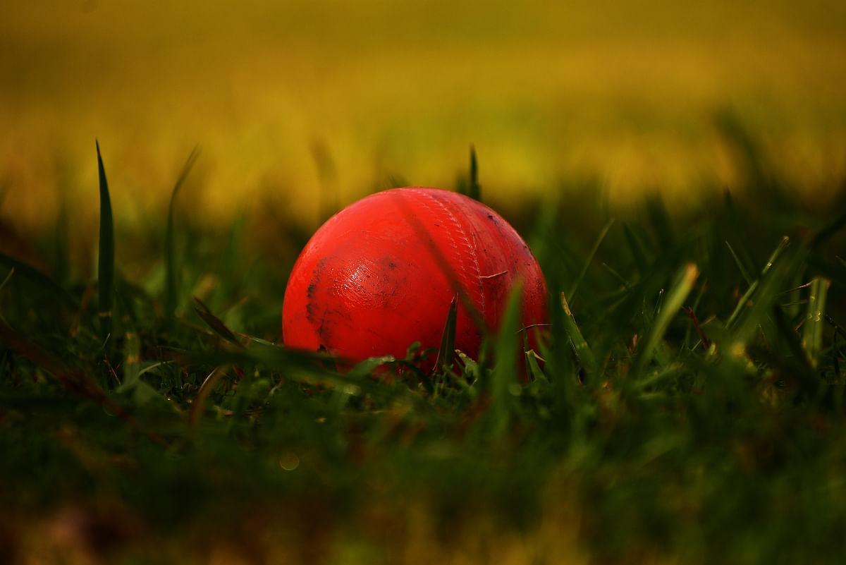 Cricket - Representational Image