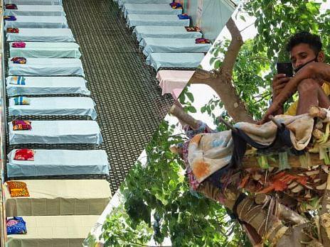 கொரோனா: 'தனிமைப்படுத்திக்கொள்ள இடமில்லை; 11 நாள்களாக மரத்தில் வசிக்கும் தெலங்கானா இளைஞர்!