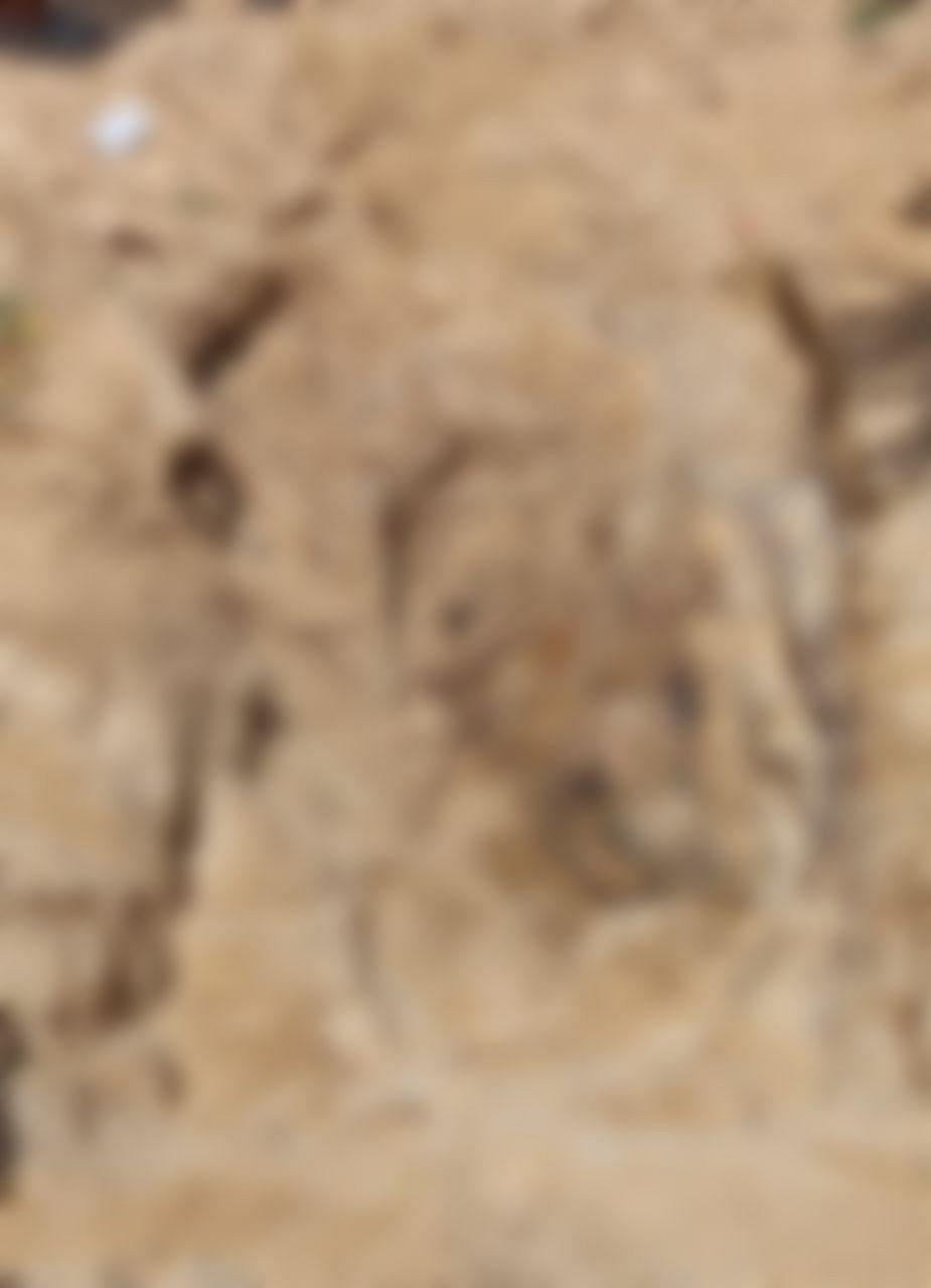 நவீன் புதைக்கப்பட்ட இடம்