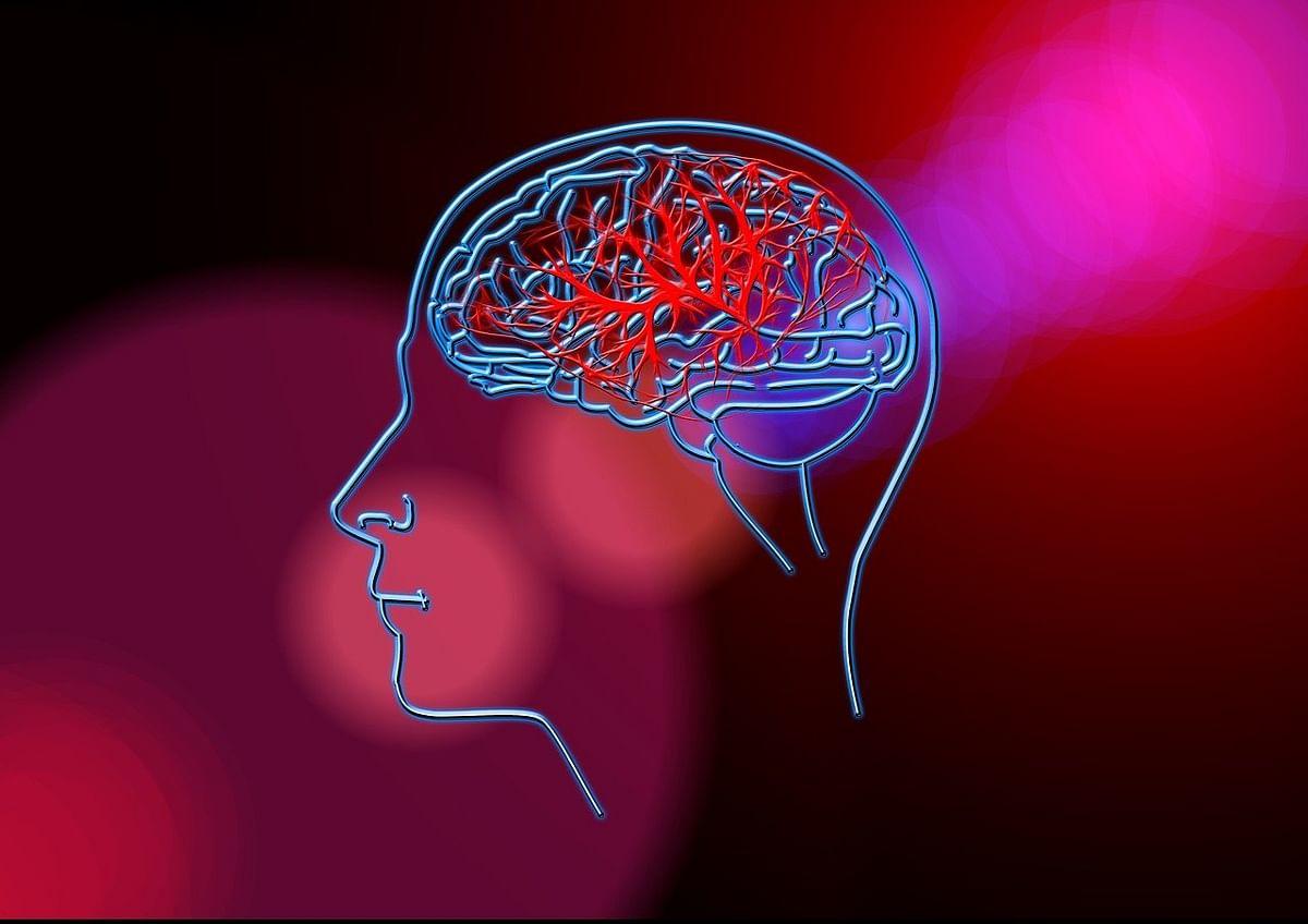 Brain - Representational Image