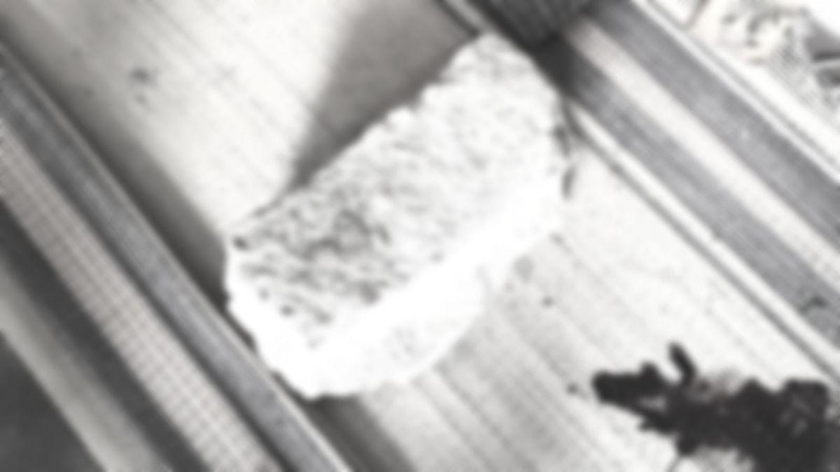 குழந்தையைக் கொல்ல பயன்படுத்தப்பட்ட பாறாங்கல்