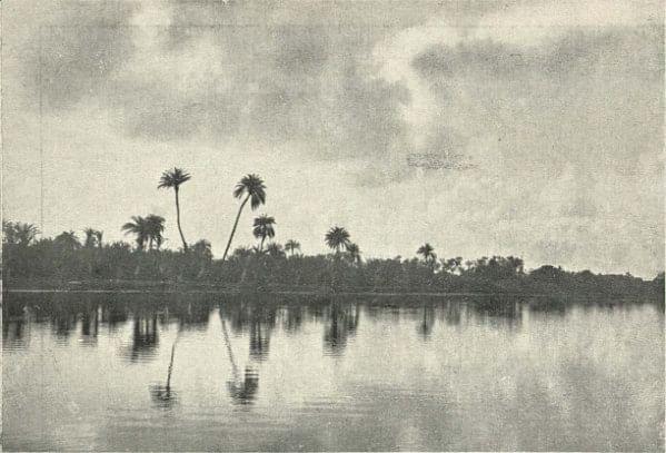 Adyar River, 1905