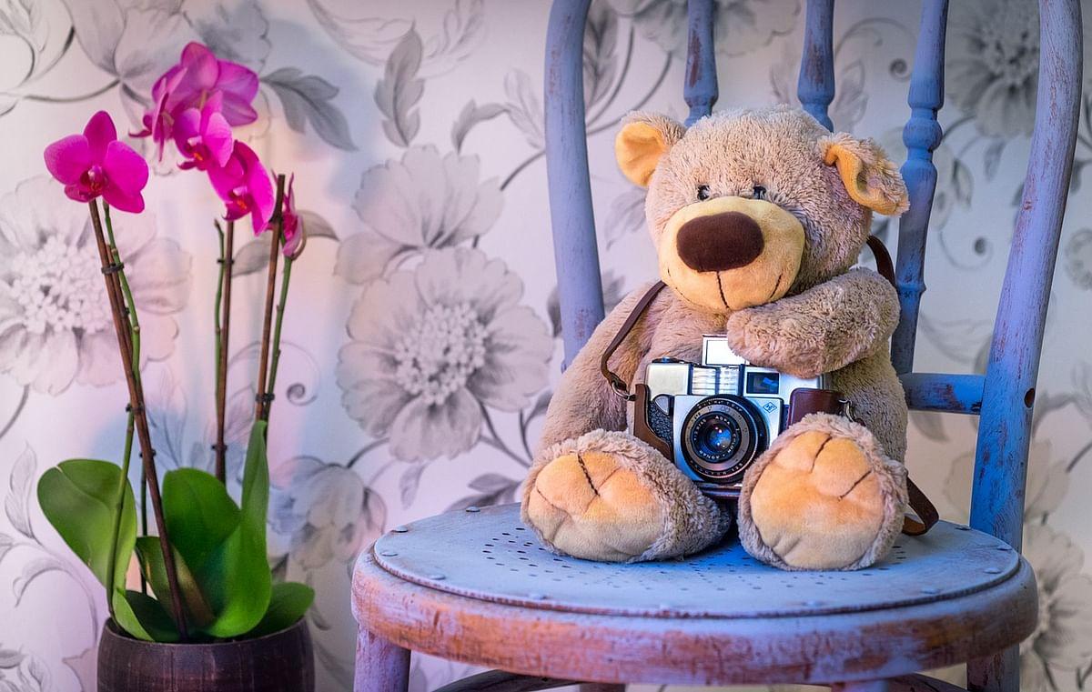 Teddy's Bear