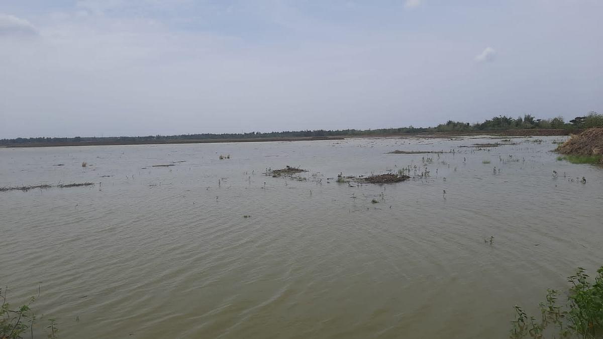 துளசேந்திரபுரம் ஏரி