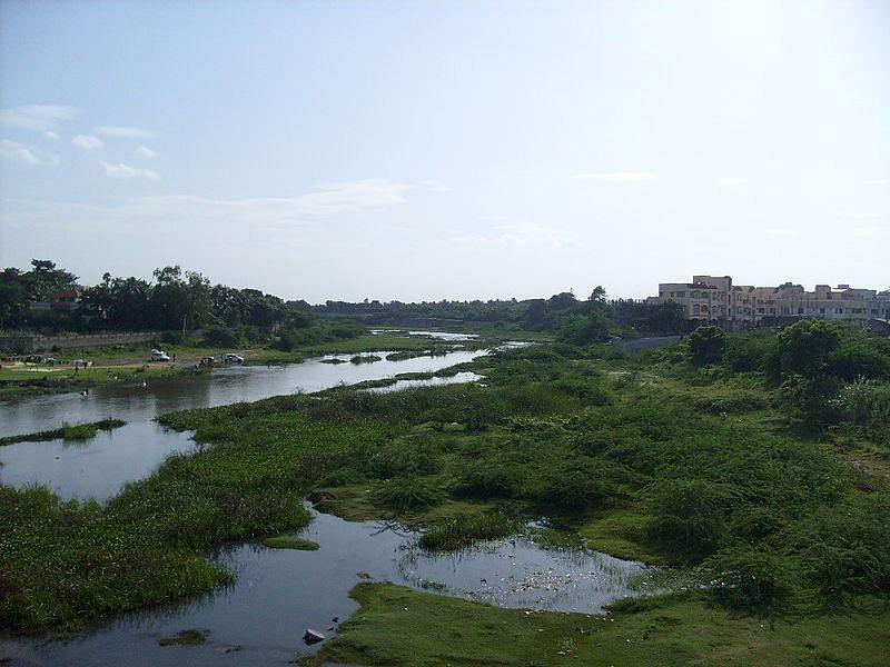 Adyar River/ Manapakkam Bridge