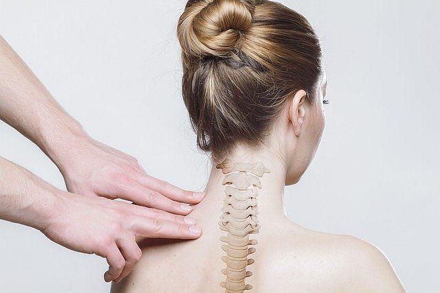 Spinal cord (Representational Image)