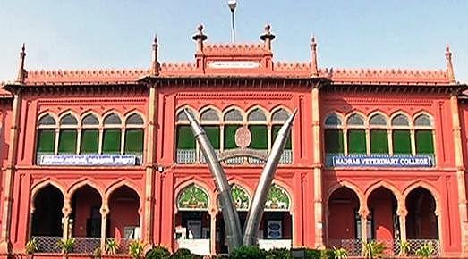 கால்நடை மருத்துவக் கல்லூரி