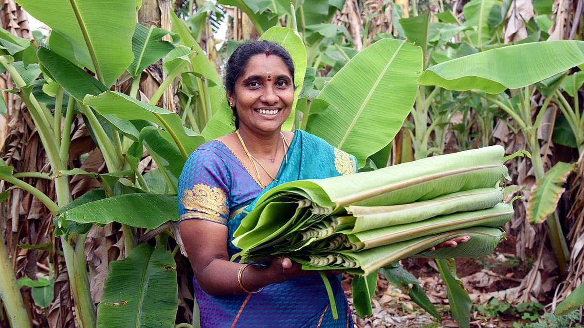 ராஜேஸ்வரி