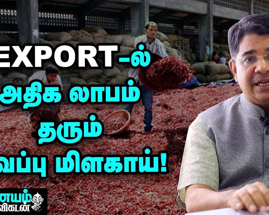 Chilli Export