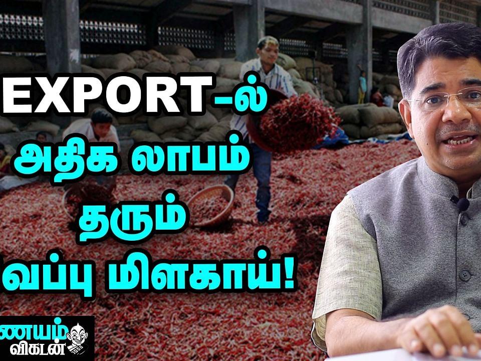 மிளகாய் ஏற்றுமதி; கவனிக்க வேண்டிய விஷயங்கள் என்னென்ன? | Chilli Export | Nanayam Vikatan