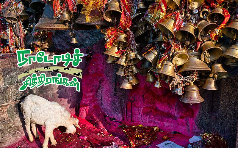 நாடோடிச் சித்திரங்கள்