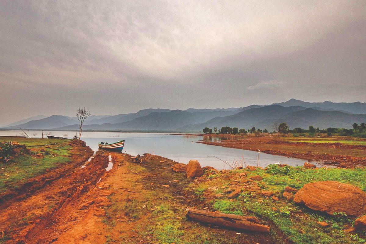 Forest of Amaravati