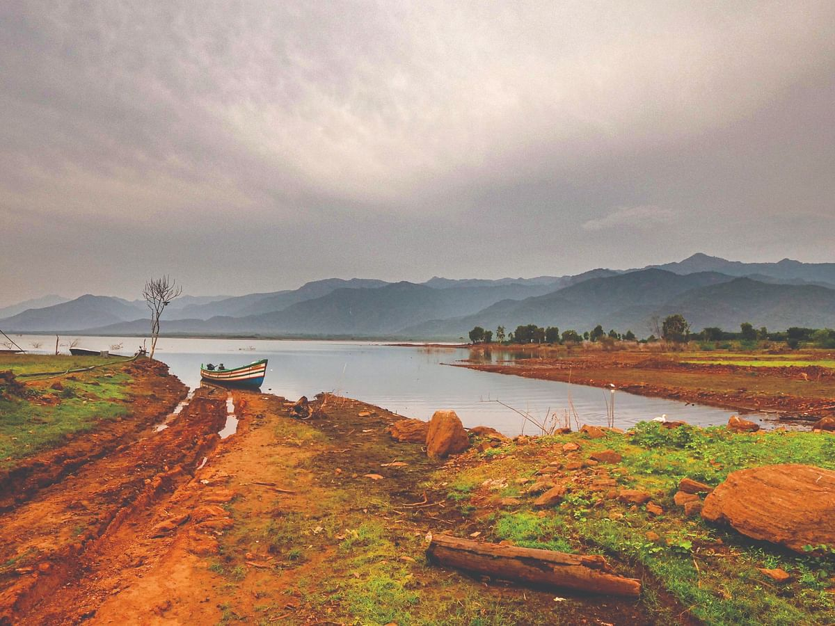 Deep into the forest of Amaravati