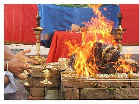 நிம்மதியும் முன்னேற்றமும் அருளும் ஸ்ரீமகா வாராஹி ஹோமம்... நீங்களும் சங்கல்பிக்கலாம்!