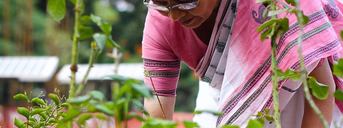 ডিমেনশিয়ায় আক্রান্ত রুগির পরিচর্যাকারীদের প্রতি যত্নশীলতা