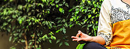 योग और मानसिक स्वास्थ - डा शिवरामा वरमबल्ली
