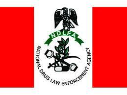 NDLEA nabs pregnant woman, fake soldier with illicit substances