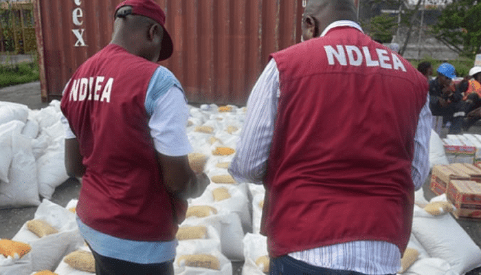 NDLEA intercepts illicit drugs concealed in canned tomato paste