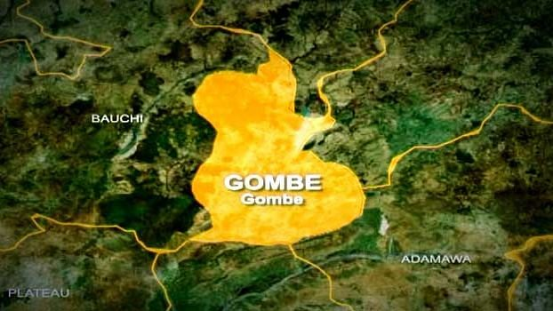 Gombe establishes gender-based clinic for rape victims