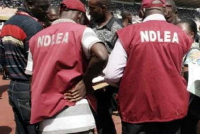 Marwa commends NDLEA operatives for confiscating N90bn illicit substances in four months