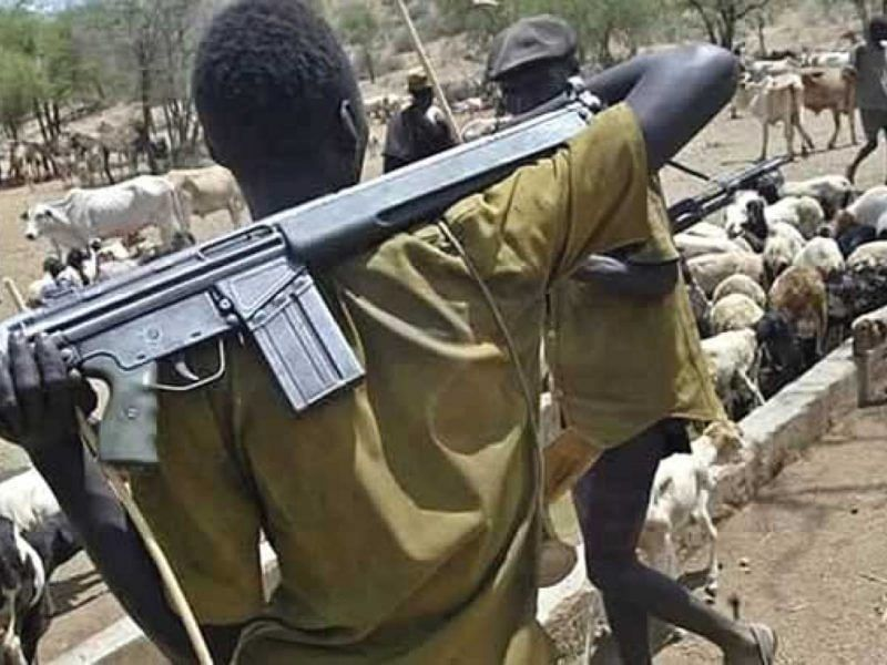 Sallah Tragedy: Suspected herdsmen slaughter three-month-old baby, couple in Benue
