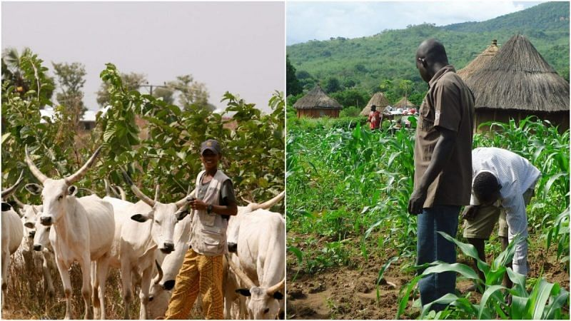 Grazing routes recovery has come to stay – FG