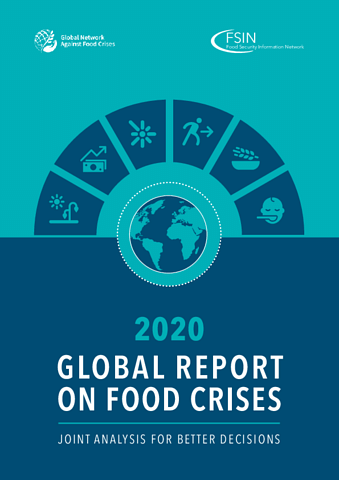 Nearly 20 million more people hit by food crises last year