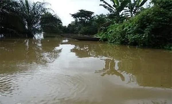 Driver plunges truck into Ogun river to avert accident, many fatalities