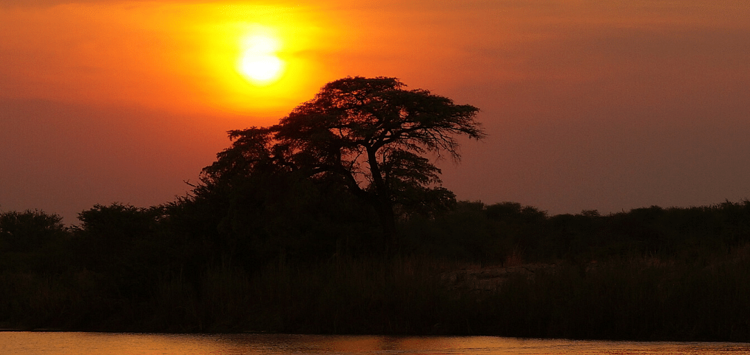 A true Okavango Delta sunset