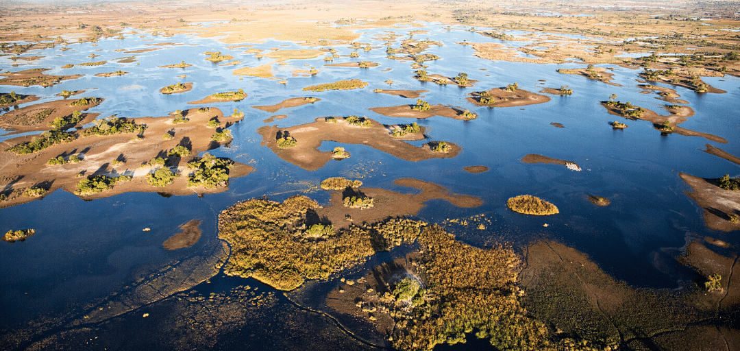 Scenic view over the Okavango delta, Botswana