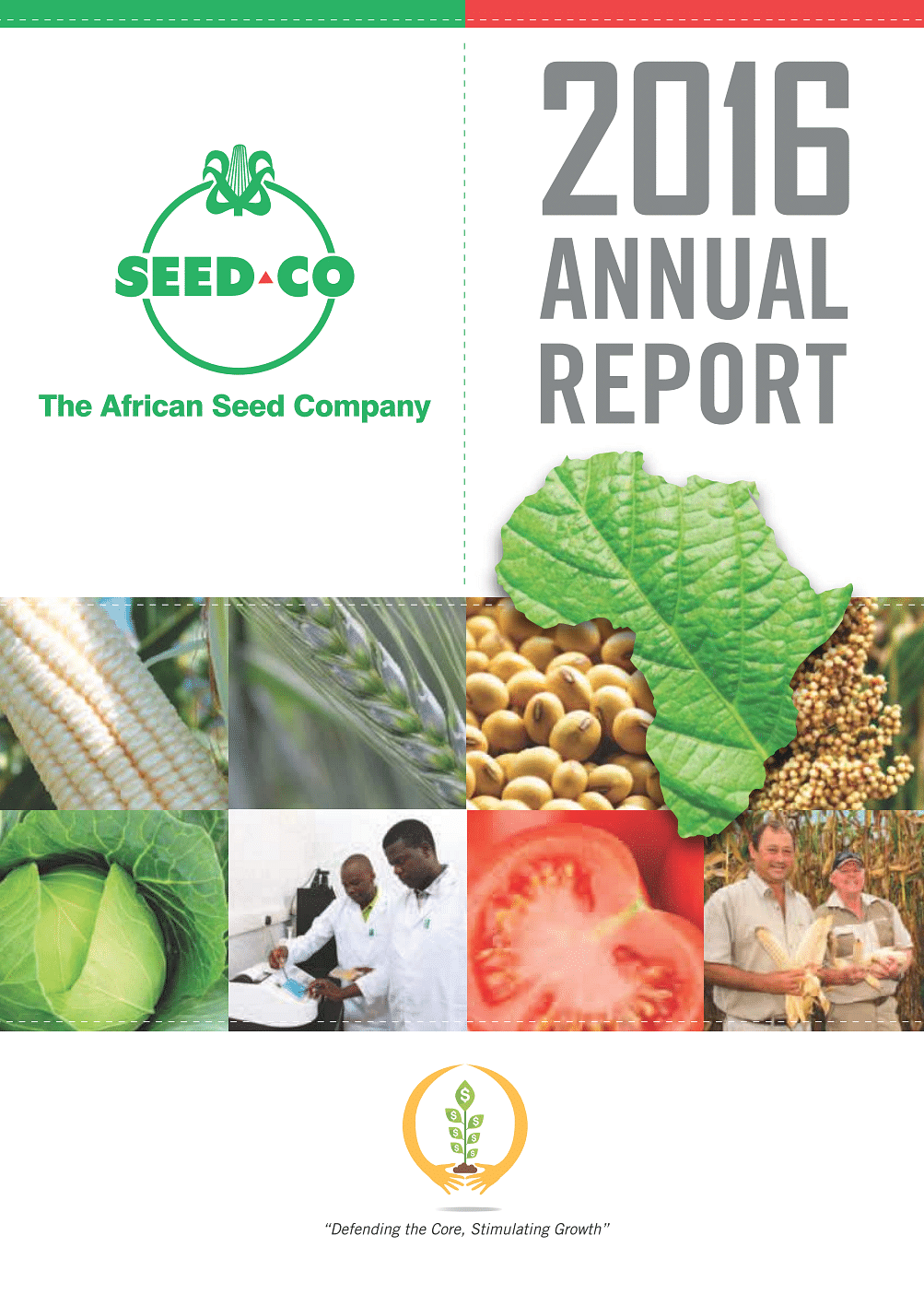 Seed Co International Annual Report 2017 cover