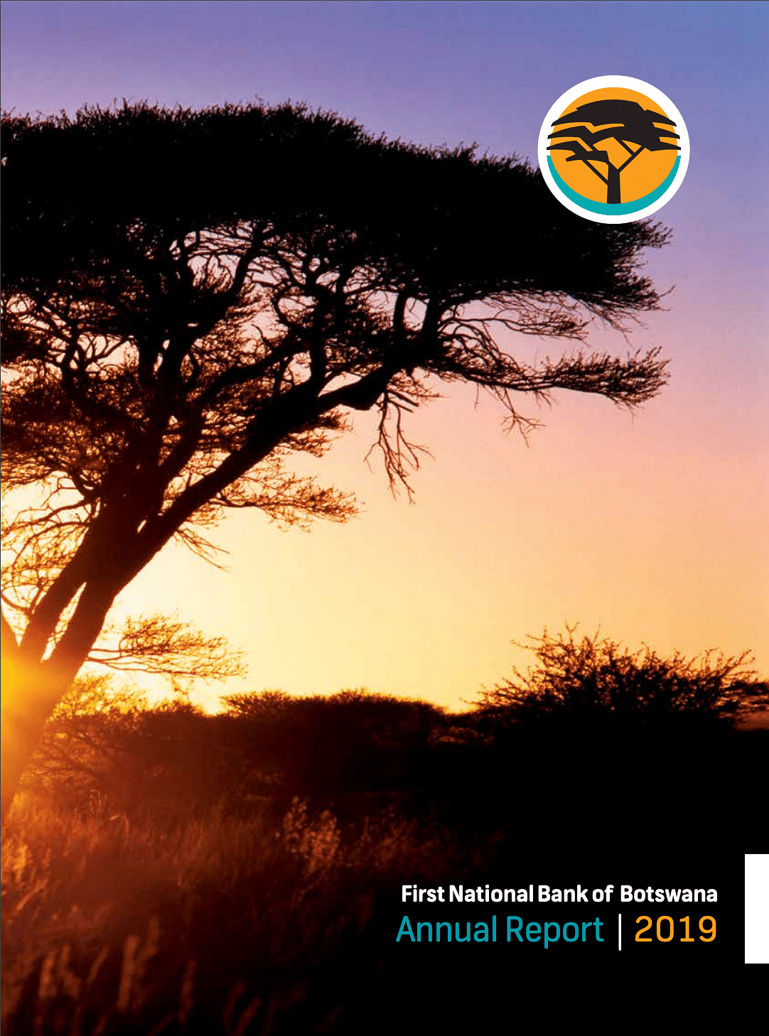 FNBB Annual Report 2019 cover