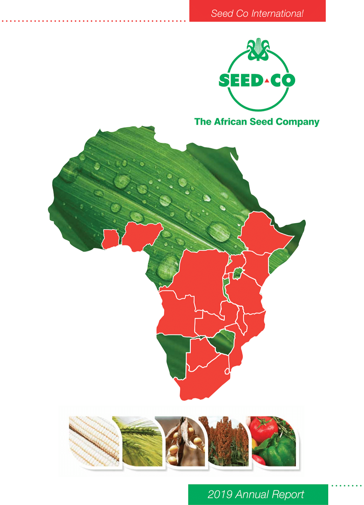 Seed Co International Annual Report 2019 cover