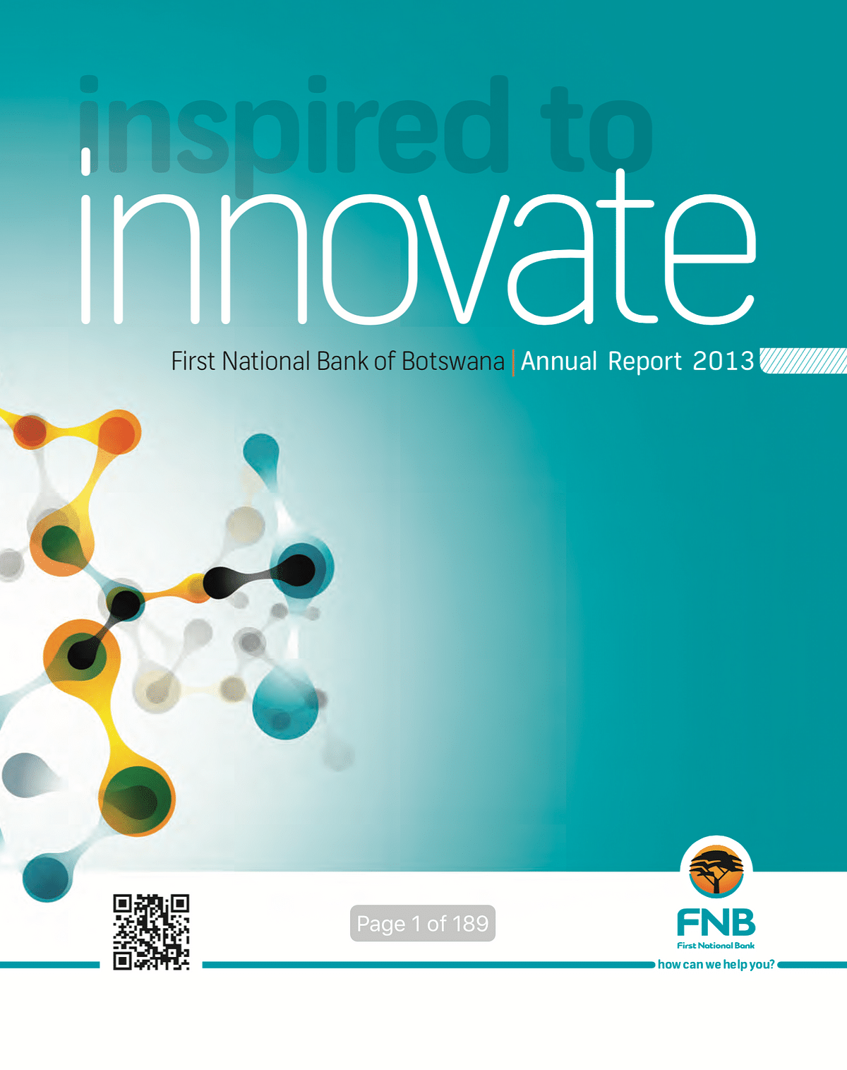 FNBB Annual Report 2013 cover