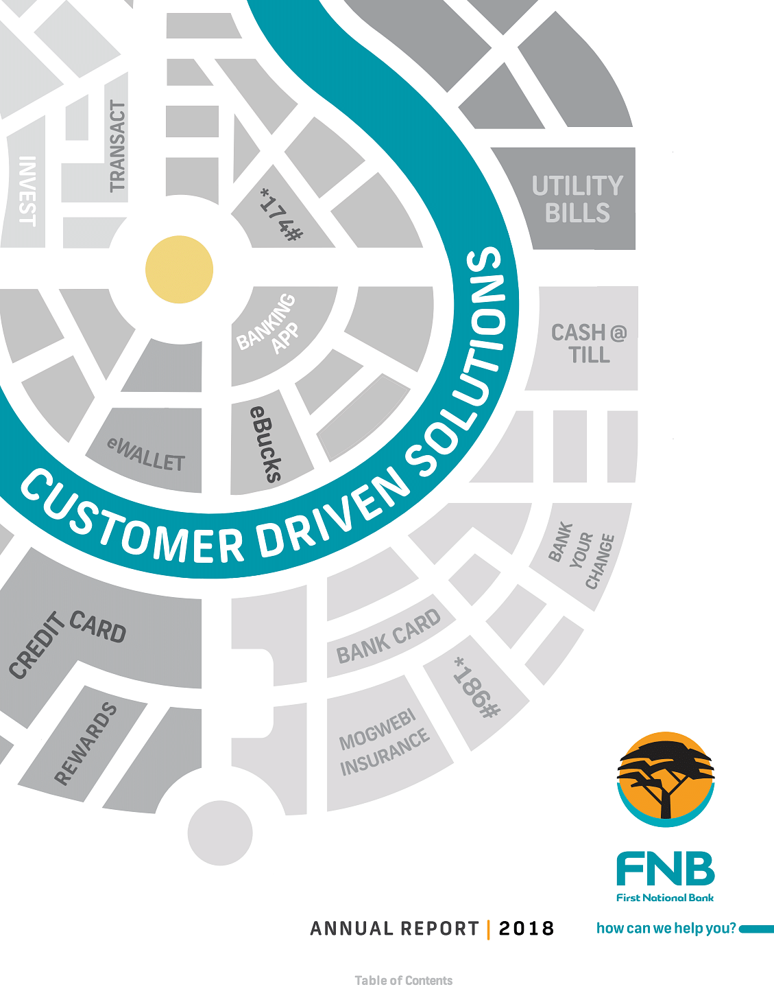 FNBB Annual Report 2018 cover